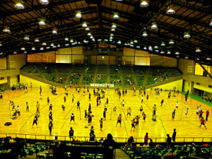 2010年4月18日(日)第16回東京都インディアカ大会